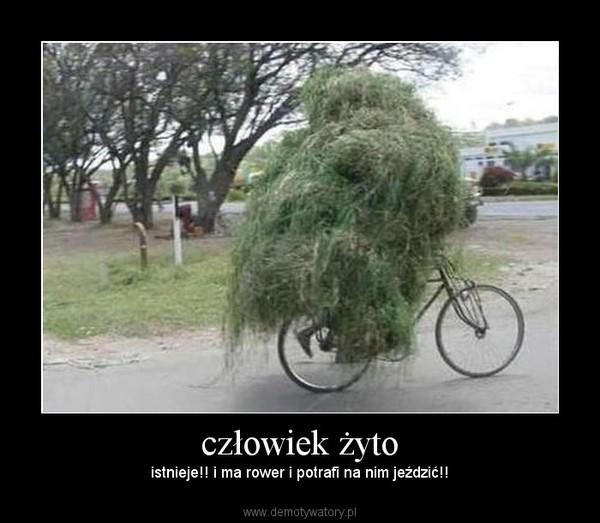 człowiek żyto – istnieje!! i ma rower i potrafi na nim jeździć!!