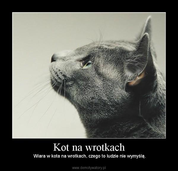 Kot na wrotkach –  Wiara w kota na wrotkach, czego to ludzie nie wymyślą.