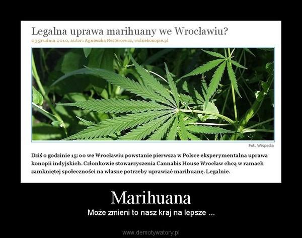 Marihuana – Może zmieni to nasz kraj na lepsze ...