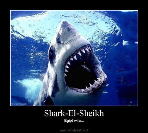 Shark-El-Sheikh
