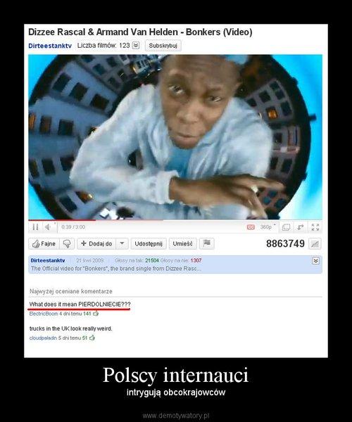 Polscy internauci