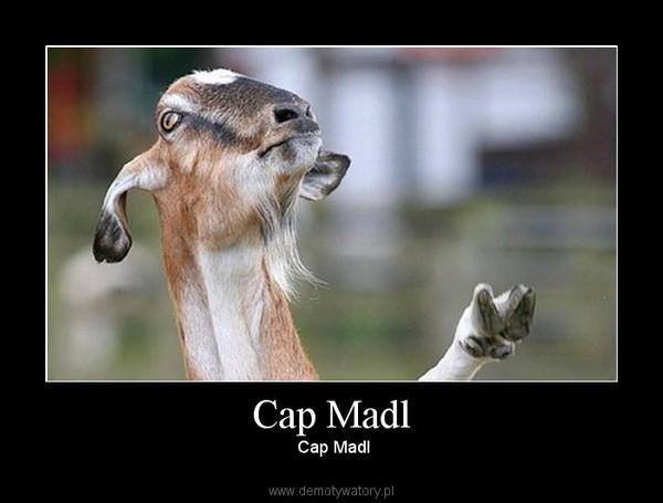 Cap Madl – Cap Madl