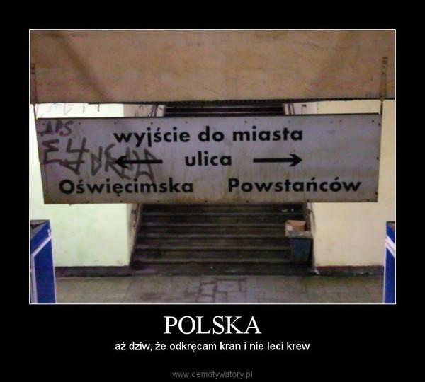 POLSKA – aż dziw, że odkręcam kran i nie leci krew
