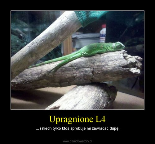 Upragnione L4