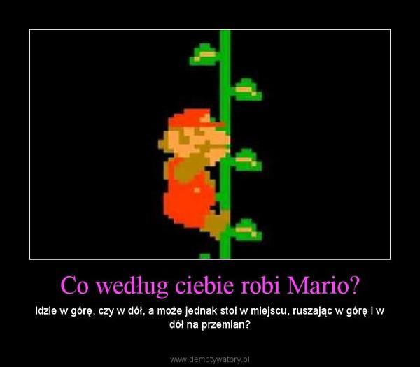 Co według ciebie robi Mario? – Idzie w górę, czy w dół, a może jednak stoi w miejscu, ruszając w górę i w dół na przemian?