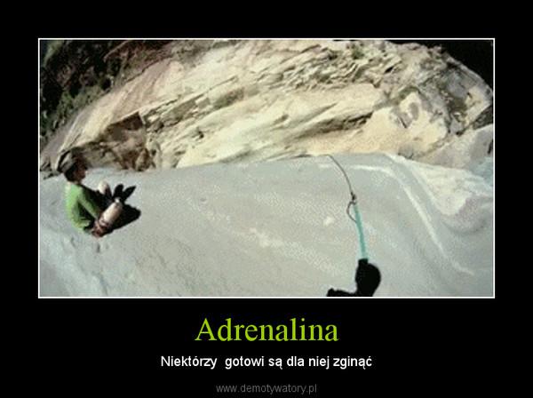 Adrenalina – Niektórzy  gotowi są dla niej zginąć