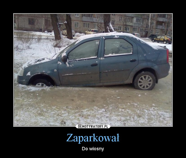 Zaparkował – Do wiosny