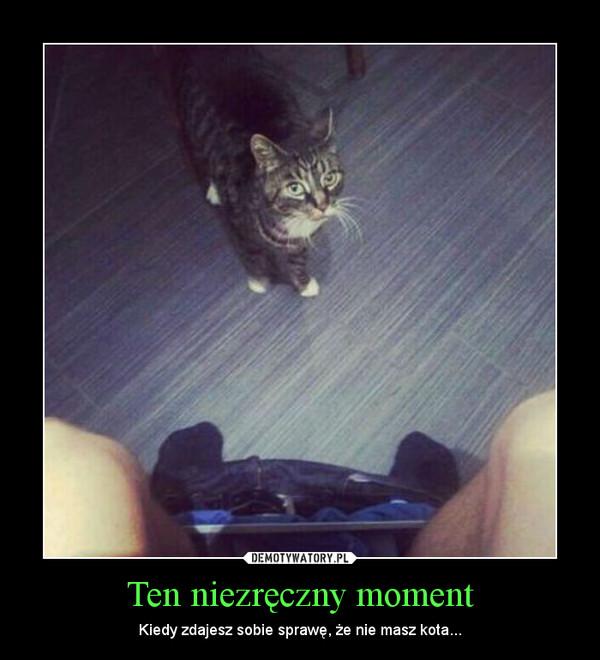 Ten niezręczny moment – Kiedy zdajesz sobie sprawę, że nie masz kota...