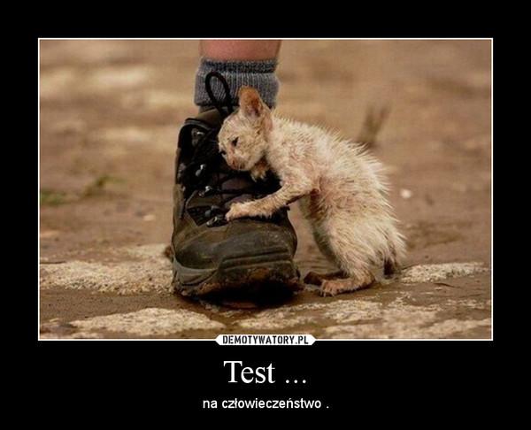 Test ... – na człowieczeństwo .