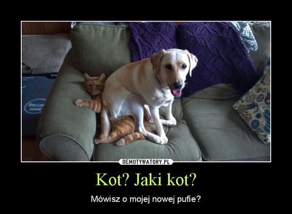 Kot? Jaki kot? – Mówisz o mojej nowej pufie?