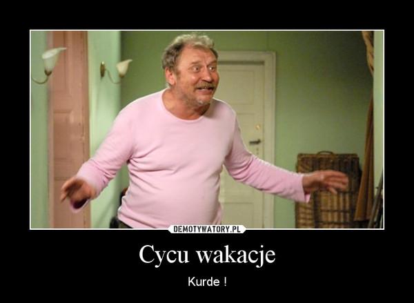Cycu wakacje – Kurde !