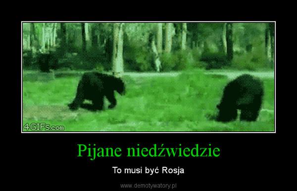 Pijane niedźwiedzie – To musi być Rosja