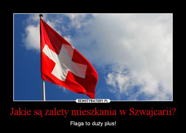 Jakie są zalety mieszkania w Szwajcarii? – Flaga to duży plus!