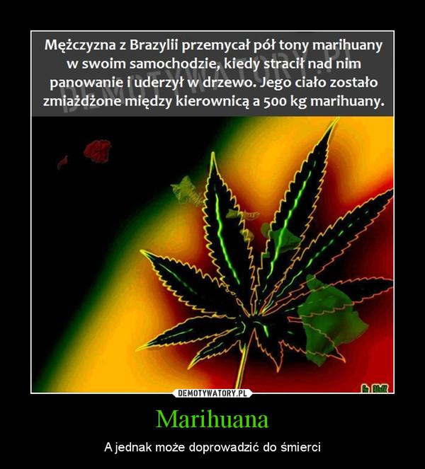 Marihuana – A jednak może doprowadzić do śmierci