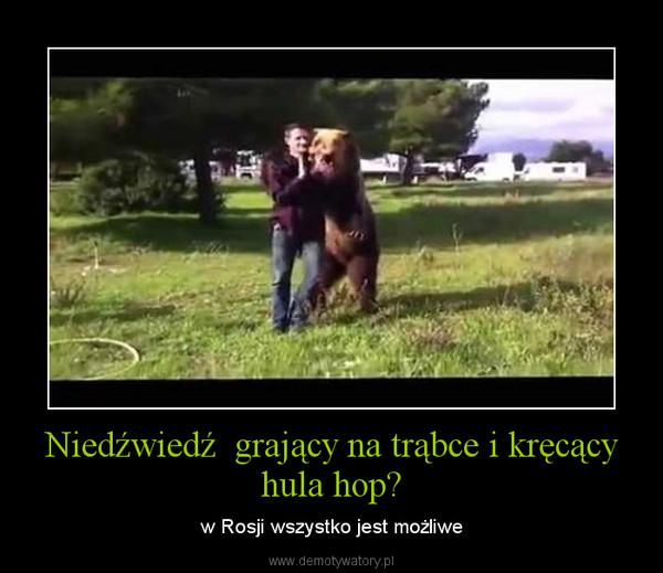 Niedźwiedź  grający na trąbce i kręcący hula hop? – w Rosji wszystko jest możliwe
