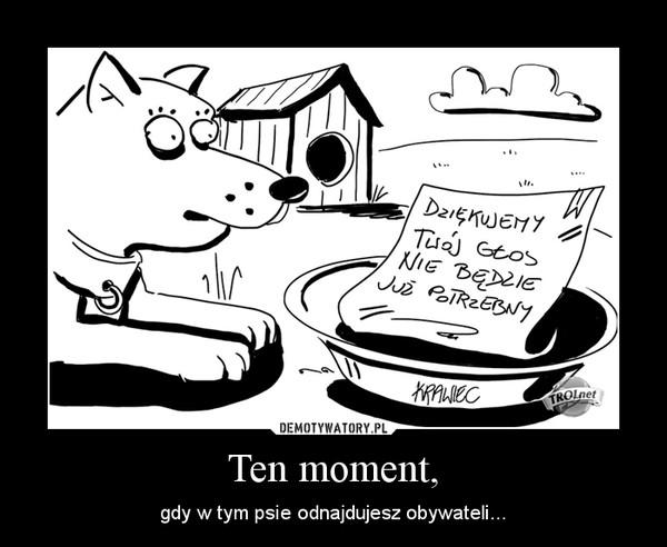 Ten moment, – gdy w tym psie odnajdujesz obywateli...