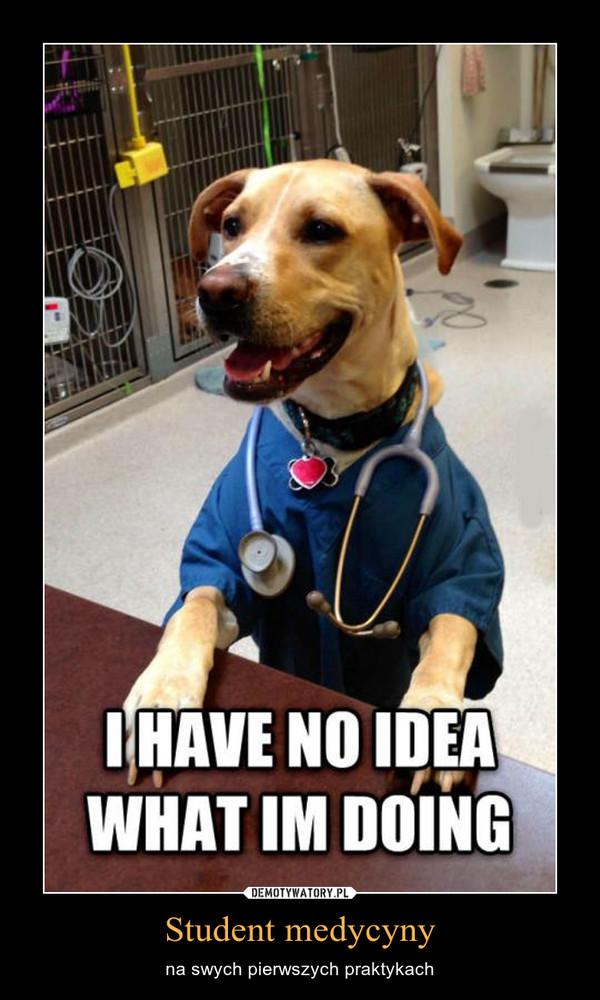 Student medycyny – na swych pierwszych praktykach