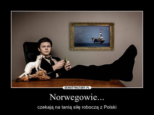 Norwegowie... – czekają na tanią siłę roboczą z Polski