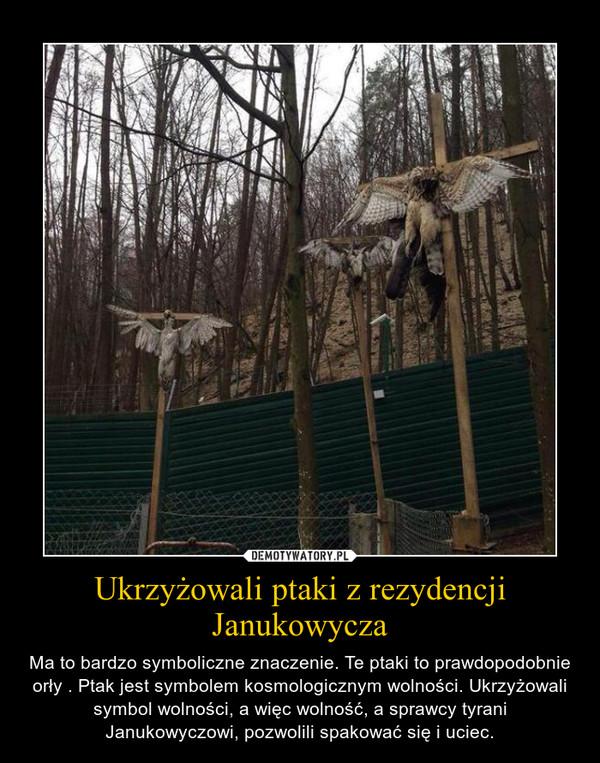 Ukrzyżowali ptaki z rezydencji Janukowycza – Ma to bardzo symboliczne znaczenie. Te ptaki to prawdopodobnie orły . Ptak jest symbolem kosmologicznym wolności. Ukrzyżowali symbol wolności, a więc wolność, a sprawcy tyrani Janukowyczowi, pozwolili spakować się i uciec.