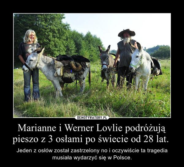 Marianne i Werner Lovlie podróżują pieszo z 3 osłami po świecie od 28 lat.  – Jeden z osłów został zastrzelony no i oczywiście ta tragedia musiała wydarzyć się w Polsce.
