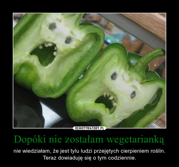Dopóki nie zostałam wegetarianką – nie wiedziałam, że jest tylu ludzi przejętych cierpieniem roślin. Teraz dowiaduję się o tym codziennie.