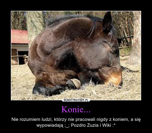 Konie... – Nie rozumiem ludzi, którzy nie pracowali nigdy z koniem, a się wypowiadają ;_; Pozdro Zuzia i Wiki :*