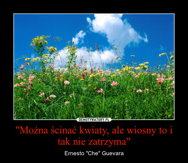 """""""Można ścinać kwiaty, ale wiosny to i tak nie zatrzyma"""" – Ernesto """"Che"""" Guevara"""