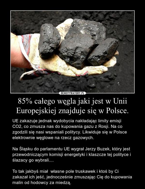 85% całego węgla jaki jest w Unii Europejskiej znajduje się w Polsce. – UE zakazuje jednak wydobycia nakładając limity emisji CO2, co zmusza nas do kupowania gazu z Rosji. Na co zgodzili się nasi wspaniali politycy. Likwiduje się w Polsce elektrownie węglowe na rzecz gazowych.Na Śląsku do parlamentu UE wygrał Jerzy Buzek, który jest przewodniczącym komisji energetyki i klaszcze tej polityce i ślazacy go wybrali....To tak jakbyś miał  własne pole truskawek i ktoś by Ci zakazał ich jeść, jednocześnie zmuszając Cię do kupowania malin od hodowcy za miedzą.