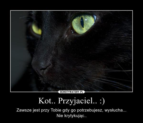 Kot.. Przyjaciel.. :) – Zawsze jest przy Tobie gdy go potrzebujesz, wysłucha...Nie krytykując..
