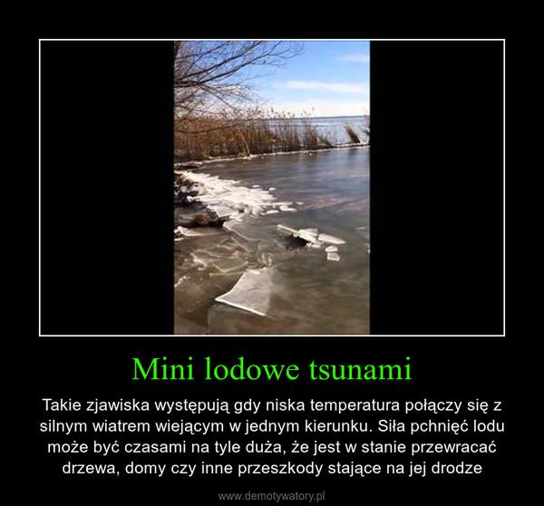 Mini lodowe tsunami – Takie zjawiska występują gdy niska temperatura połączy się z silnym wiatrem wiejącym w jednym kierunku. Siła pchnięć lodu może być czasami na tyle duża, że jest w stanie przewracać drzewa, domy czy inne przeszkody stające na jej drodze