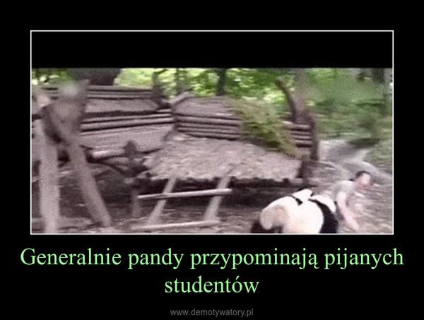 Generalnie pandy przypominają pijanych studentów –