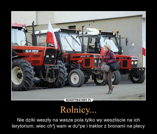 Rolnicy... – Nie dziki weszły na wasze pola tylko wy weszliscie na ich terytorium, wiec ch*j wam w du*pe i traktor z bronami na plecy