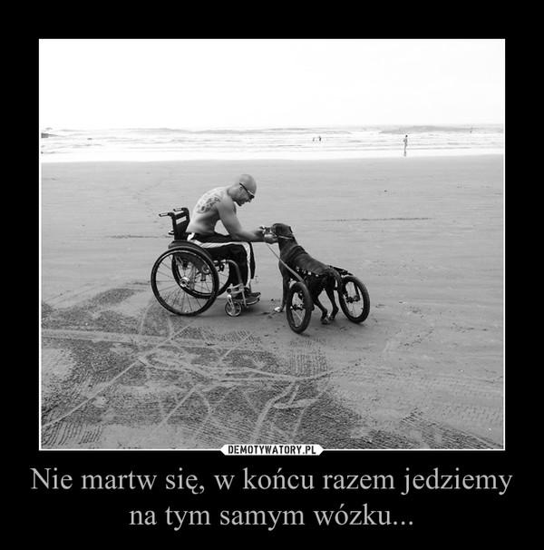 Nie martw się, w końcu razem jedziemy na tym samym wózku... –