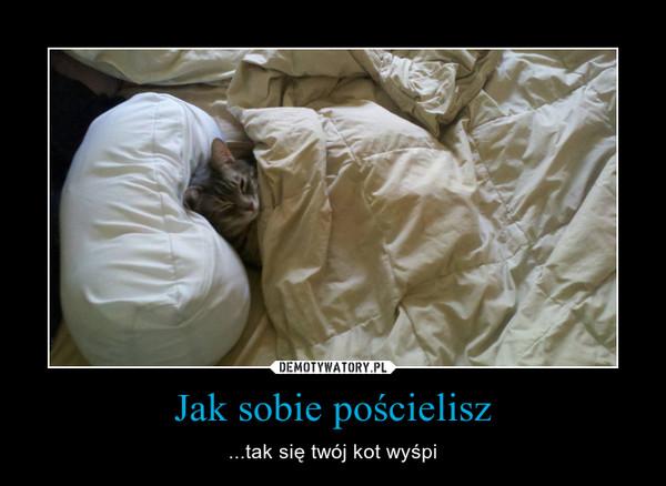 Jak sobie pościelisz – ...tak się twój kot wyśpi