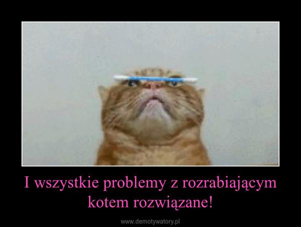I wszystkie problemy z rozrabiającym kotem rozwiązane! –