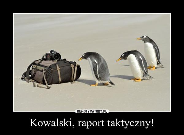 Kowalski, raport taktyczny! –