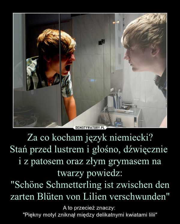 """Za co kocham język niemiecki?Stań przed lustrem i głośno, dźwięcznie i z patosem oraz złym grymasem na twarzy powiedz:""""Schöne Schmetterling ist zwischen den zarten Blüten von Lilien verschwunden"""" – A to przecież znaczy: """"Piękny motyl zniknął między delikatnymi kwiatami lilii"""""""