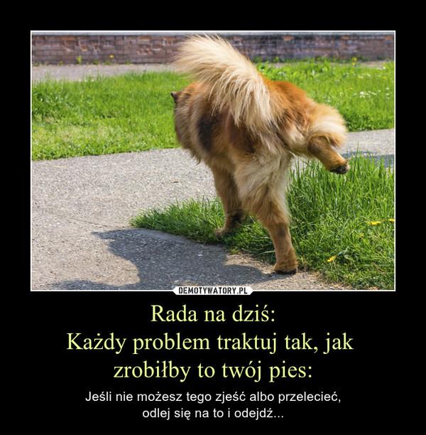 Rada na dziś:Każdy problem traktuj tak, jak zrobiłby to twój pies: – Jeśli nie możesz tego zjeść albo przelecieć,odlej się na to i odejdź...