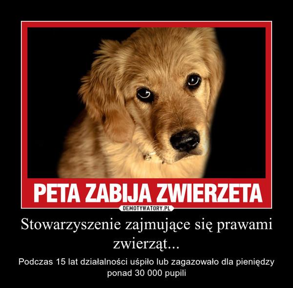 Stowarzyszenie zajmujące się prawami zwierząt... – Podczas 15 lat działalności uśpiło lub zagazowało dla pieniędzy ponad 30 000 pupili