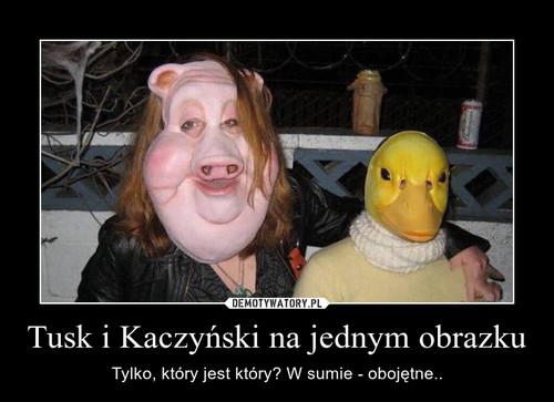 Tusk i Kaczyński na jednym obrazku