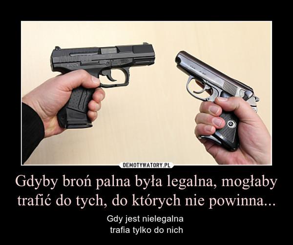 Gdyby broń palna była legalna, mogłaby trafić do tych, do których nie powinna... – Gdy jest nielegalna trafia tylko do nich