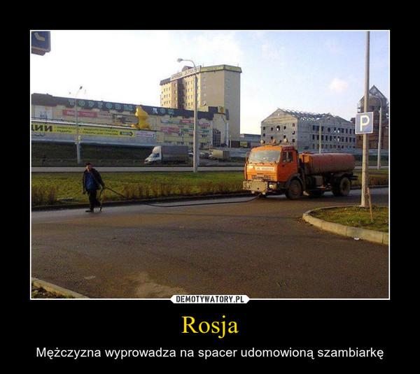 Rosja – Mężczyzna wyprowadza na spacer udomowioną szambiarkę