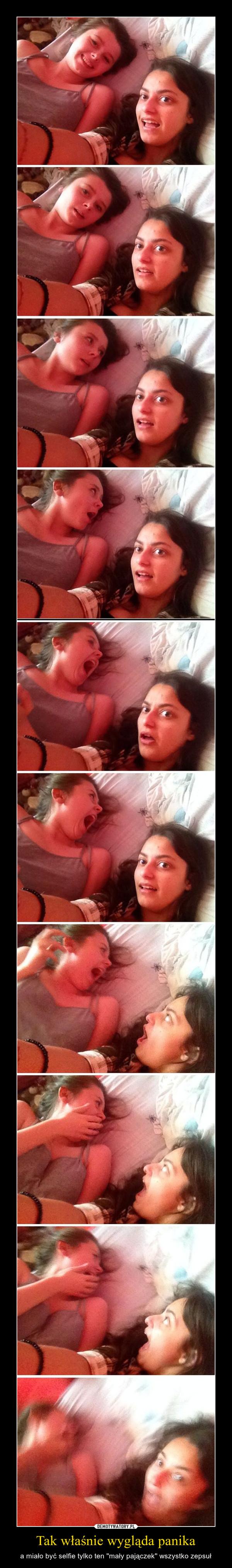 Tak właśnie wygląda panika – a miało być selfie tylko ten ''mały pajączek'' wszystko zepsuł
