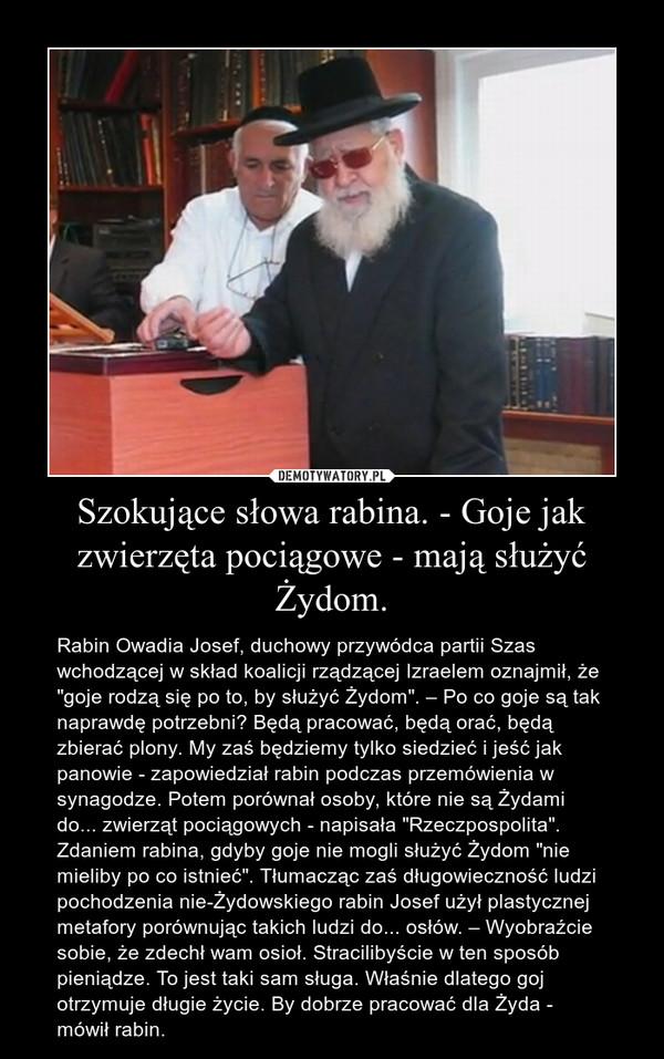 """Szokujące słowa rabina. - Goje jak zwierzęta pociągowe - mają służyć Żydom. – Rabin Owadia Josef, duchowy przywódca partii Szas wchodzącej w skład koalicji rządzącej Izraelem oznajmił, że """"goje rodzą się po to, by służyć Żydom"""". – Po co goje są tak naprawdę potrzebni? Będą pracować, będą orać, będą zbierać plony. My zaś będziemy tylko siedzieć i jeść jak panowie - zapowiedział rabin podczas przemówienia w synagodze. Potem porównał osoby, które nie są Żydami do... zwierząt pociągowych - napisała """"Rzeczpospolita"""".Zdaniem rabina, gdyby goje nie mogli służyć Żydom """"nie mieliby po co istnieć"""". Tłumacząc zaś długowieczność ludzi pochodzenia nie-Żydowskiego rabin Josef użył plastycznej metafory porównując takich ludzi do... osłów. – Wyobraźcie sobie, że zdechł wam osioł. Stracilibyście w ten sposób pieniądze. To jest taki sam sługa. Właśnie dlatego goj otrzymuje długie życie. By dobrze pracować dla Żyda - mówił rabin."""