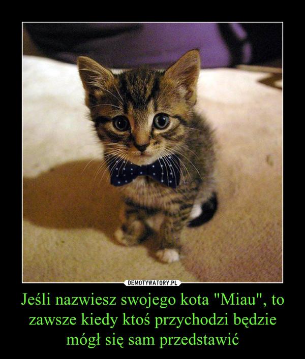 """Jeśli nazwiesz swojego kota """"Miau"""", to zawsze kiedy ktoś przychodzi będzie mógł się sam przedstawić –"""