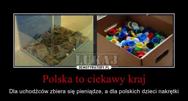 Polska to ciekawy kraj – Dla uchodźców zbiera się pieniądze, a dla polskich dzieci nakrętki