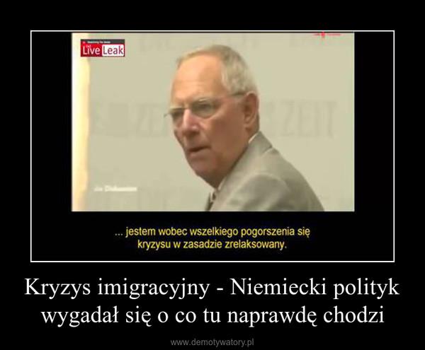 Kryzys imigracyjny - Niemiecki polityk wygadał się o co tu naprawdę chodzi –