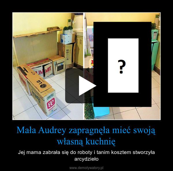 Mała Audrey zapragnęła mieć swoją własną kuchnię – Jej mama zabrała się do roboty i tanim kosztem stworzyła arcydzieło