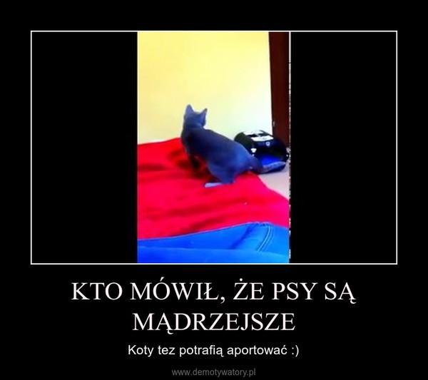 KTO MÓWIŁ, ŻE PSY SĄ MĄDRZEJSZE – Koty tez potrafią aportować :)