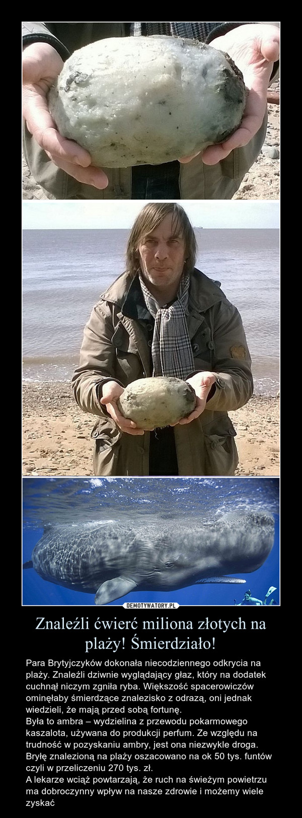 Znaleźli ćwierć miliona złotych na plaży! Śmierdziało! – Para Brytyjczyków dokonała niecodziennego odkrycia na plaży. Znaleźli dziwnie wyglądający głaz, który na dodatek cuchnął niczym zgniła ryba. Większość spacerowiczów ominęłaby śmierdzące znalezisko z odrazą, oni jednak wiedzieli, że mają przed sobą fortunę.Była to ambra – wydzielina z przewodu pokarmowego kaszalota, używana do produkcji perfum. Ze względu na trudność w pozyskaniu ambry, jest ona niezwykle droga. Bryłę znalezioną na plaży oszacowano na ok 50 tys. funtów czyli w przeliczeniu 270 tys. zł.A lekarze wciąż powtarzają, że ruch na świeżym powietrzu ma dobroczynny wpływ na nasze zdrowie i możemy wiele zyskać